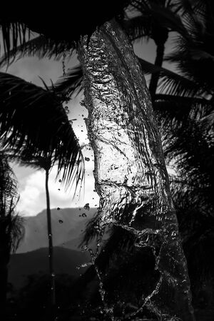 Black and white image of pouring water and drops with mountains and palm trees in background.