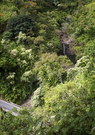 Road to Hana passes through lush foliage with waterfall in background in Hawaii.
