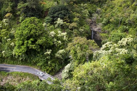 Car drives on one lane bridge through lush jungle foliage in Hawaii with waterfall in background.