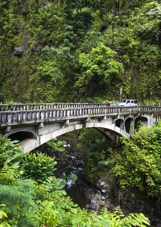 Car crosses old bridge over creek in tropical jungle with lush green foliage.