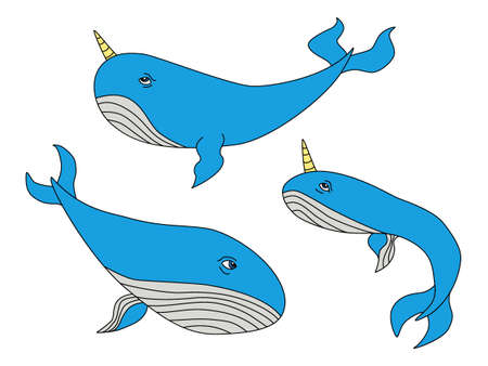 Cute hand drawn cartoon characters of narwhal whales Illustration