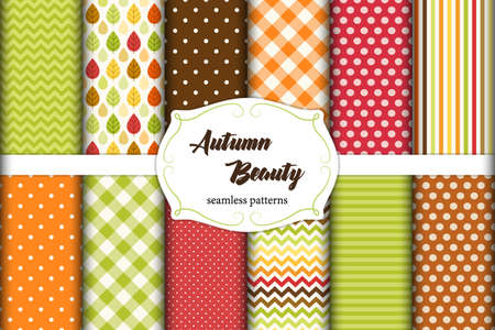 Set of 12 cute seamless Autumn Beauty patterns with leaves, polka dots. stripes, chevron and plaid