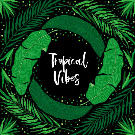 Beautiful tropical green palm leaves botanicals foliage background for your decoration Illustration