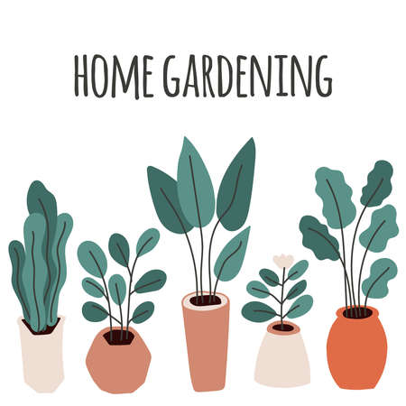 Cute home gardening theme illustration, trendy hand drawn plants in pots in simple flat style as secret garden, urban jungle or greenhouse Archivio Fotografico - 138104739