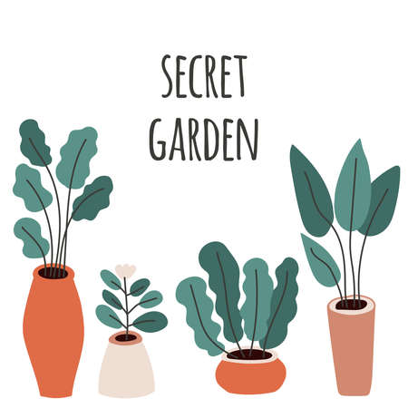 Cute home gardening theme illustration, trendy hand drawn plants in pots in simple flat style Archivio Fotografico - 138104740