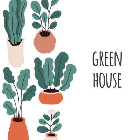 Cute home gardening theme illustration, trendy hand drawn plants in pots in simple flat style Archivio Fotografico - 138104744