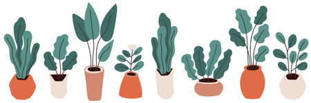 Cute home gardening horizontal banner background, trendy hand drawn plants in pots in simple flat style Archivio Fotografico - 138104761