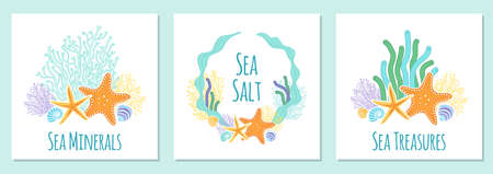 Cute set of banners with hand drawn shells and starfishes Ilustrace