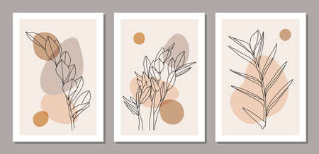 Set of minimalist botanical line art composition with leaves abstract collage 일러스트