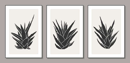 Set of minimalist botanical line art compositions with leaves abstract collage 일러스트