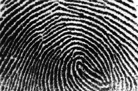thumbprint or animal print 免版税图像