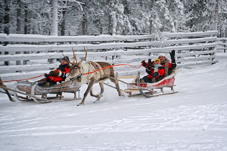 Rovaniemi, Finland - December 30, 2010: Couple greeting spectators during race on the reindeer sledges in Rovaniemi on December 30, 2010 Archivio Fotografico