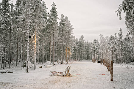 finnish: Sledge at snow valley in finnish Lapland in winter