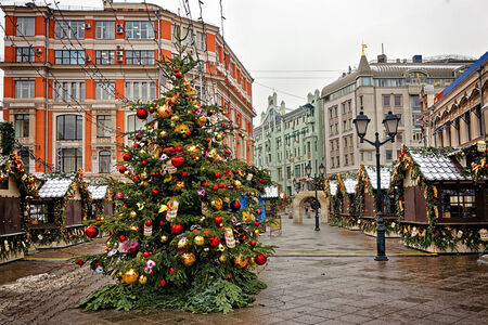 street market: Christmas tree at the street market in Moscow