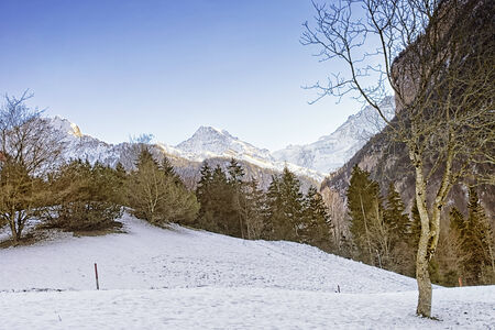 eiger: Swiss alpine winter landscape with Eiger, Monch and Jungfrau at horizon