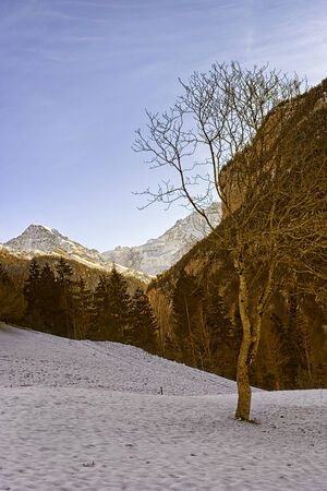 monch: Swiss alpine winter landscape with Monch and Jungfrau peaks at horizon Stock Photo