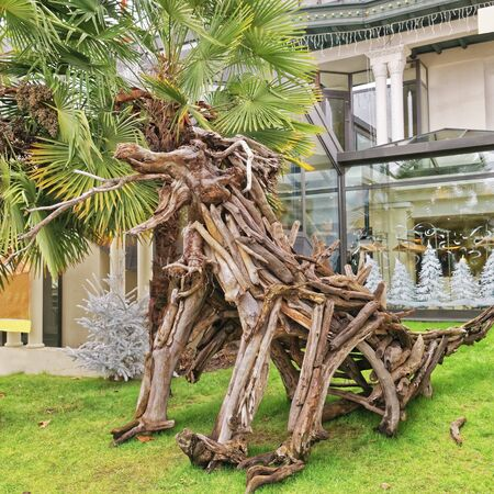 cuttings: Snag figure in Evian-les-Bains in France in the New year in winter