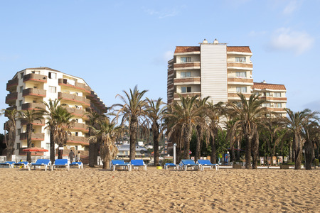 Mediterranean beach with palm trees and hotels on the first line