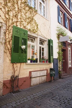 Wall of old house in Heidelberg in spring