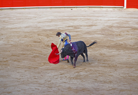 teases: Spanish bullfighter teases the bull to show its character during a bullfight corrida in Barcelona, Spain