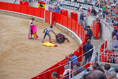 toreador: BARCELONA, SPAIN - AUGUST 01, 2010: Toreador and a defeated bull in the arena of La Monumental, Barcelona, Catalonia, Spain Editorial