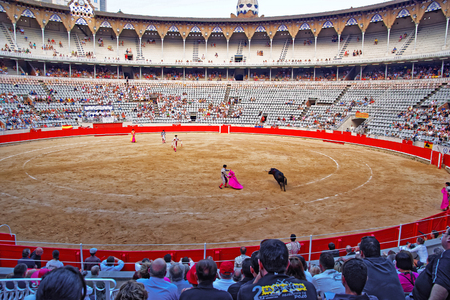 corrida: BARCELONA, SPAIN - AUGUST 01, 2010: Spanish torero is performing a bullfight at the bullfighting arena in Barcelona Spain. Corrida bullfighting is one of the most popular Spanish tradition