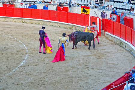 corrida: BARCELONA, SPAIN - AUGUST 01, 2010: Traditional Spanish amusement - corrida bullfighting in Barcelona, when the matador kills the bull in one swift strike with his sword through the bulls spine Editorial