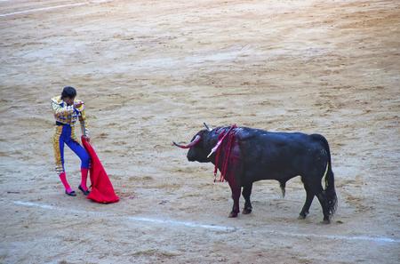 torero: BARCELONA, SPAIN - AUGUST 01, 2010: Spanish torero prepared to kill the bull during a bullfight in La Monumental arena on August 01, 2010 in Barcelona, Spain