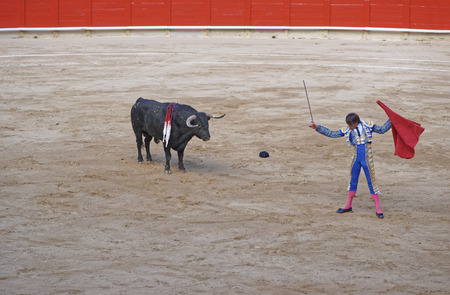 Bull looks at the sword in bullfighters hand during a bullfighing show in Barcelona, Spain.
