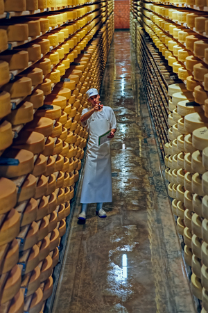 gruyere: GRUYERE, SWITZERLAND - DECEMBER 31, 2014: Gruyere cheese factory worker in a cellar of the Maison du Gruyere (cheese dairy) in Switzerland. Gruyere is a famous swiss cheese