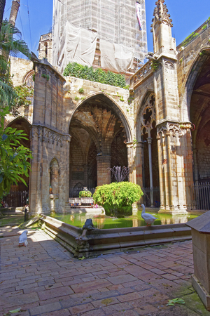 barcelona cathedral: Cloister of Barcelona Cathedral in the Gothic Quarter in Barcelona in Spain. It is also called Santa Eulalia, or Santa Creu Cathedral.
