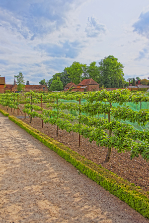 heritage protection: Kitchen garden in Audley End House in Essex in the United Kingdom. It is a medieval county house. Now it is under protection of the English Heritage. Stock Photo