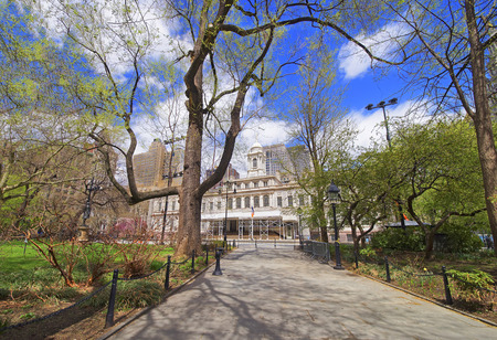 large tree: Alley to City Hall in City Hall Park in Lower Manhattan, New York, USA. City Hall on the background.