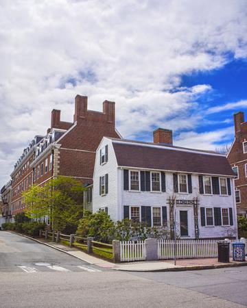 harvard university: John F Kennedy Street in Harvard University Area in Cambridge, Massachusetts, USA.