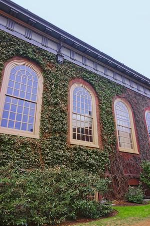 harvard university: Cambridge, USA - April 29, 2015: Ivied Building in Harvard Yard of Harvard University in Cambridge, Massachusetts, MA, USA.