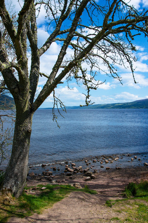 loch ness: Nature of Loch Ness in Scotland. Loch Ness is a city in the Highlands in Scotland in the United Kingdom. Stock Photo