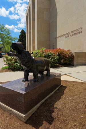 george washington statue: Washington DC, USA - May 2, 2015: Statue of hippopotamus is located near the Lisner auditorium in The George Washington University. It is located in Washington D.C., USA.