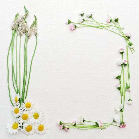 Kranz mit Feldblumen, wie Kamille und Gänseblümchen und grünen Wiese Gras auf weißem Hintergrund. Wohnung lag.