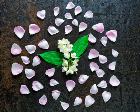 metallized: Frame with pink tea rose petals and jasmine flowers on stone with metallized effect background. Flat lay.