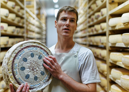creamery: Evillers, France - August 31, 2016: Cheesemaker holding a wheel of Comte Cheese in ripening cellar at Franche Comte creamery, in France