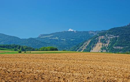 Field in a Swiss village, Yverdon les Bains at Jura Nord Vaudois district of Canton Vaud, Switzerland.