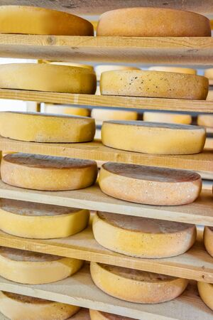 creamery: Stack of aging Cheese on wooden shelves at ripening cellar in Franche Comte creamery in France Stock Photo