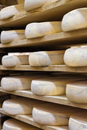 creamery: Wheels of aging Cheese on wooden shelves at maturing cellar in Franche Comte creamery in France Stock Photo