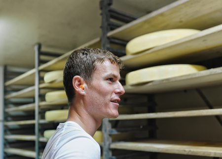 gruyere: Evillers, France - August 31, 2016: Worker and aging Gruyere de Comte Cheese on wooden shelves at ripening cellar in Franche Comte dairy in France