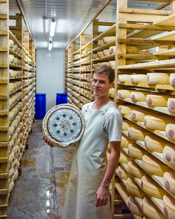 creamery: Evillers, France - August 31, 2016: Worker holding wheel of Gruyere de Comte Cheese in ripening cellar at Franche Comte dairy in France