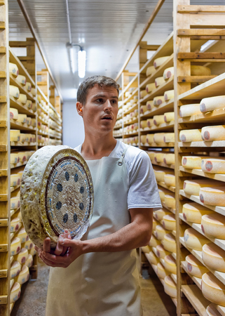 creamery: Evillers, France - August 31, 2016: Worker holding a wheel of Gruyere de Comte Cheese at ripening cellar in Franche Comte creamery in France Editorial