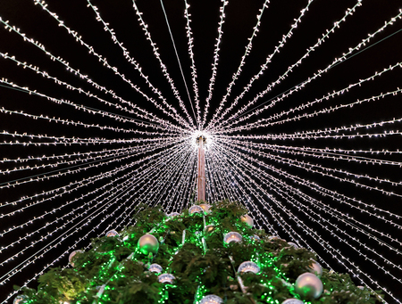 Christmas tree with decoration installed at Cathedral Square in Vilnius, Lithuania. It has fairy lights as if bridal veiling. Illuminated at night Stock Photo
