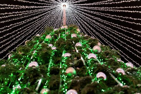 Christmas tree with decoration installed at Cathedral Square in Vilnius of Lithuania. It has fairy lights as if bridal veiling. Illuminated at night Stock Photo