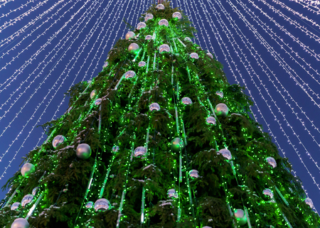Christmas tree with decorations installed at Cathedral Square in Vilnius, Lithuania. It has fairy lights as if bridal veiling. Illuminated in the evening