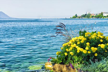 Flowers bloom at the embankment of Geneva Lake in Montreux, Vaud canton, Switzerland Stock Photo